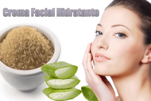 Crema Casera hidratante Facial Con Aloe Vera