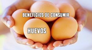 Beneficios de Consumir Huevos