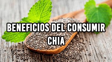 Beneficios Del Consumir Chía